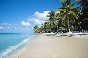 Dominikanische Republik - FamTrip Woche 3 (Stream)
